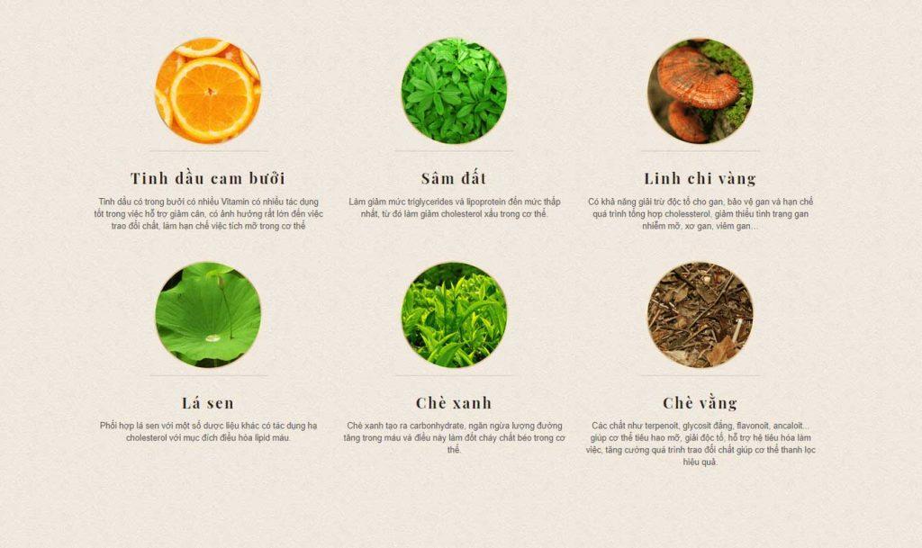 Trà giảm cân Vy & Tea